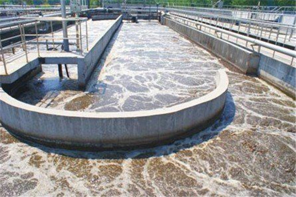 山东某造纸企业废水处理脱色剂使用案例